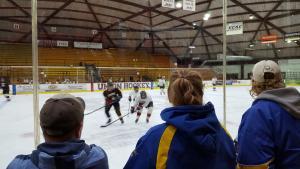 Here Comes Hockey